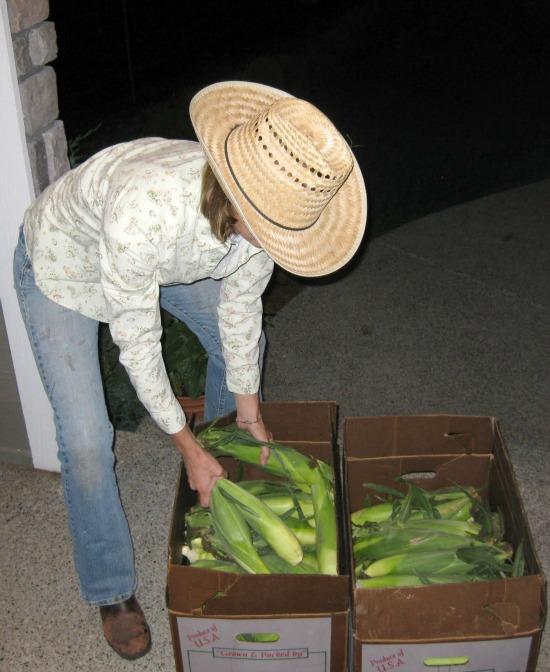 Free Corn = Happiness