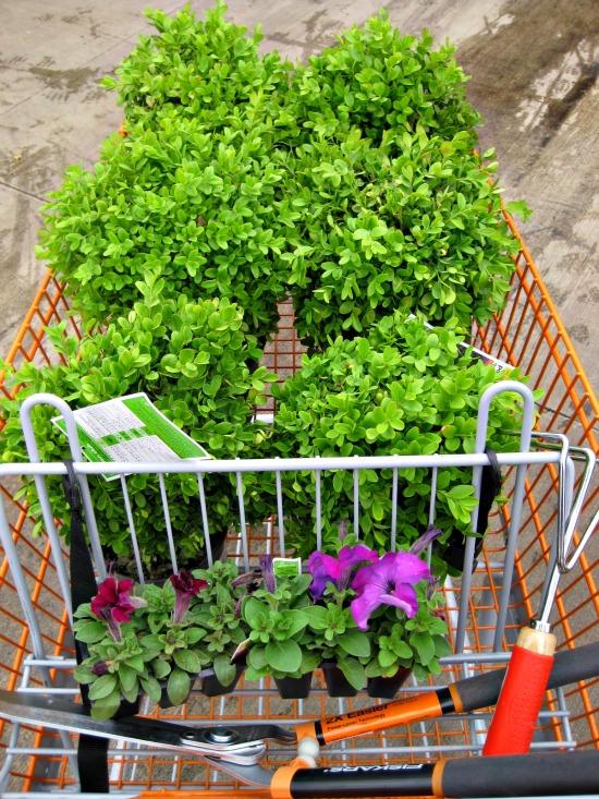 Lawn & Garden Photo Update