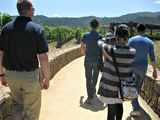 touring a vineyard