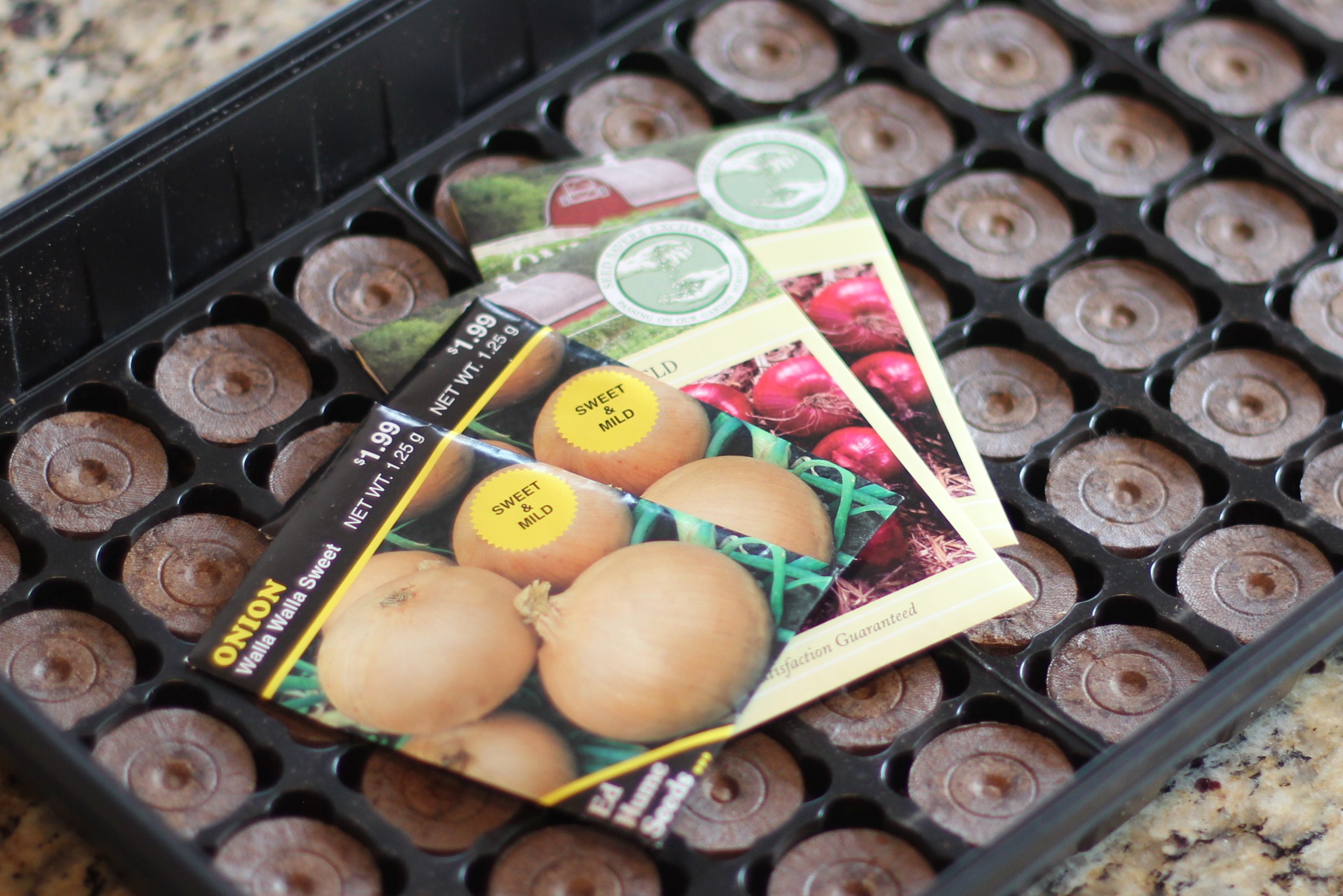 How To Grow Your Own Food: I Planted Onion Seeds Today!