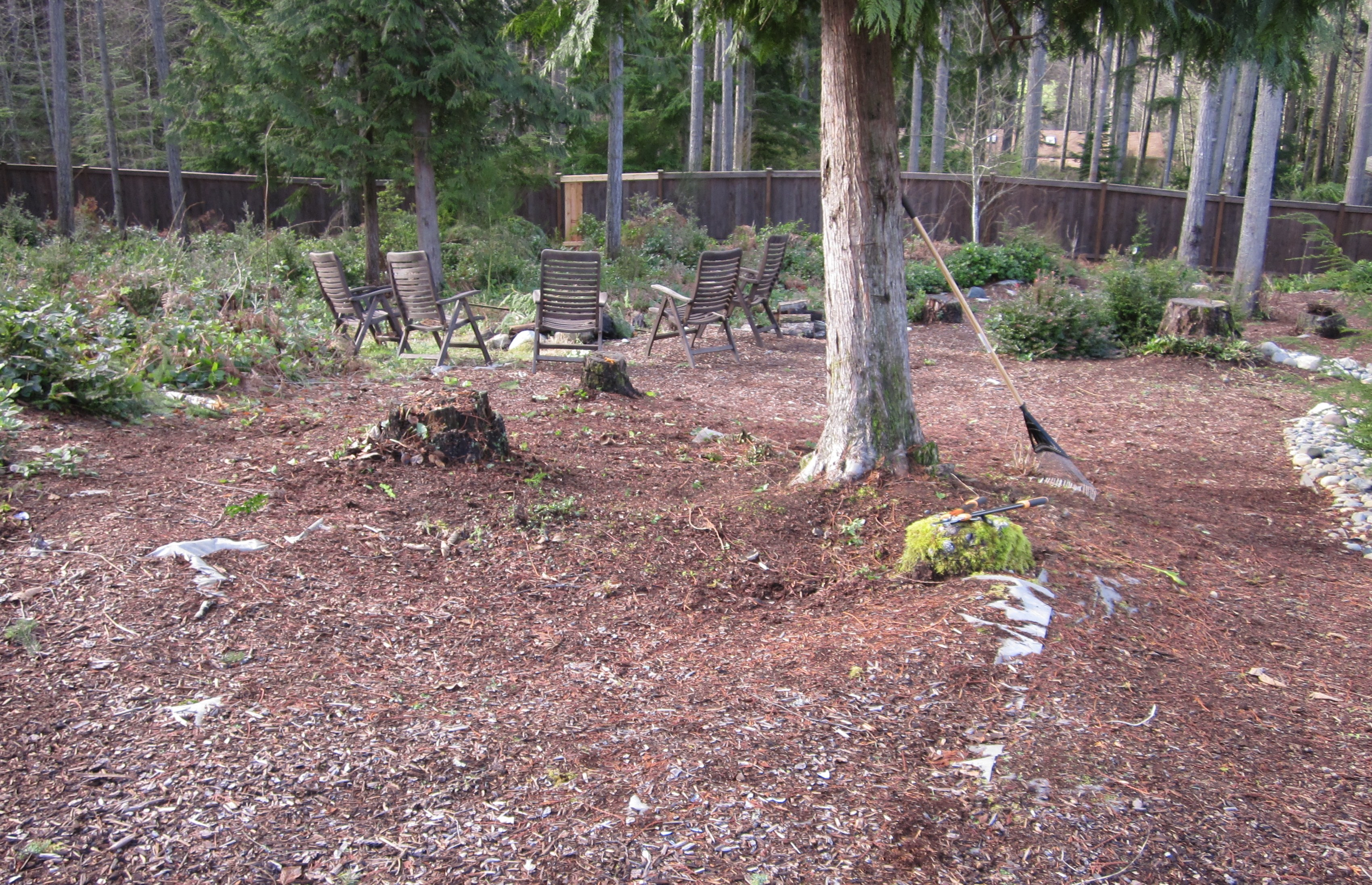 Weekend Project: Clearing The Land