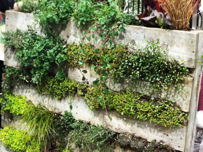 Northwest garden show coolest idea ever for Wood pallet herb garden