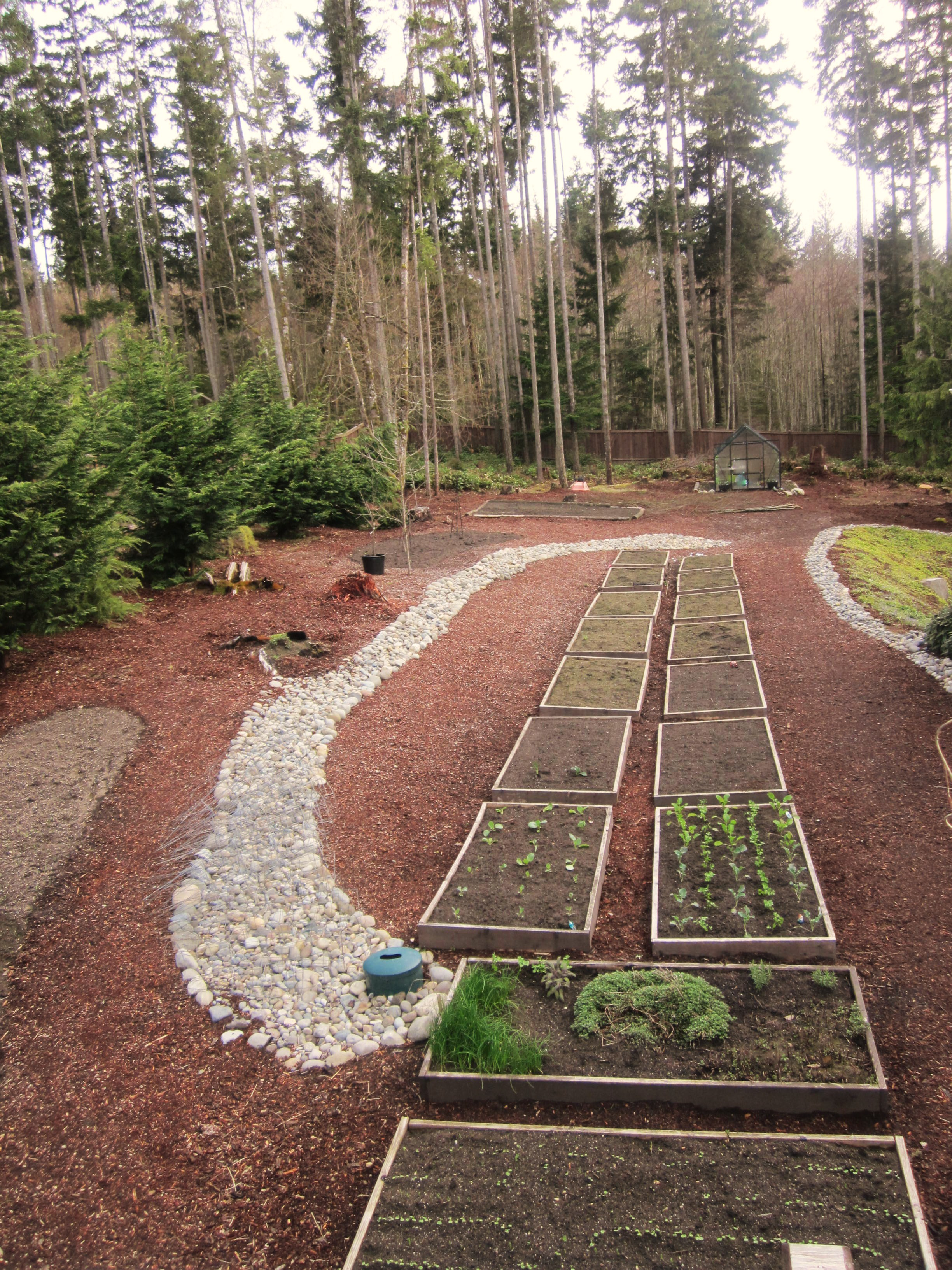 How to Grow Your Own Food: Garden Plot Pictures