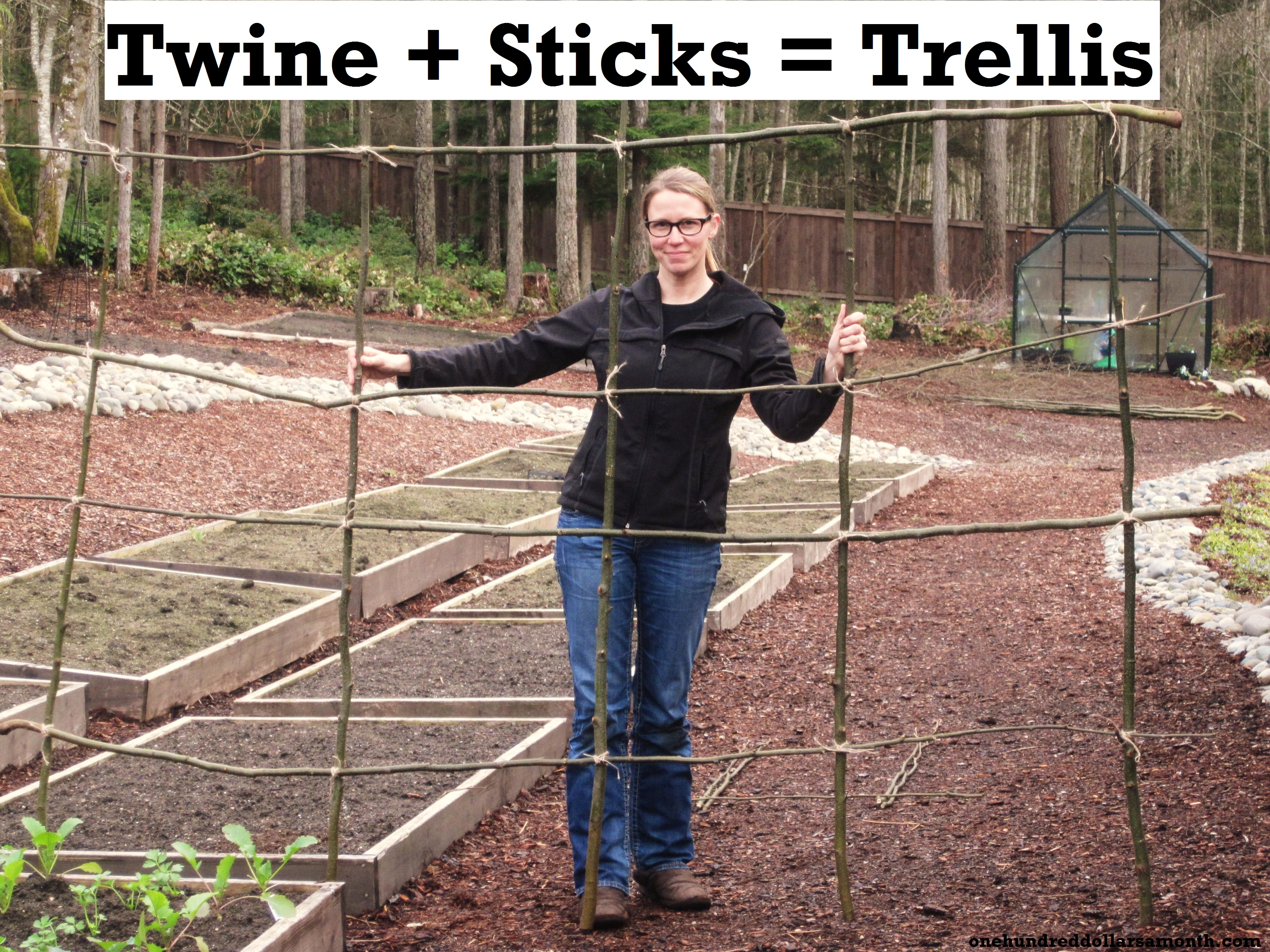 how to make a rustic pea or bean trellis out of sticks