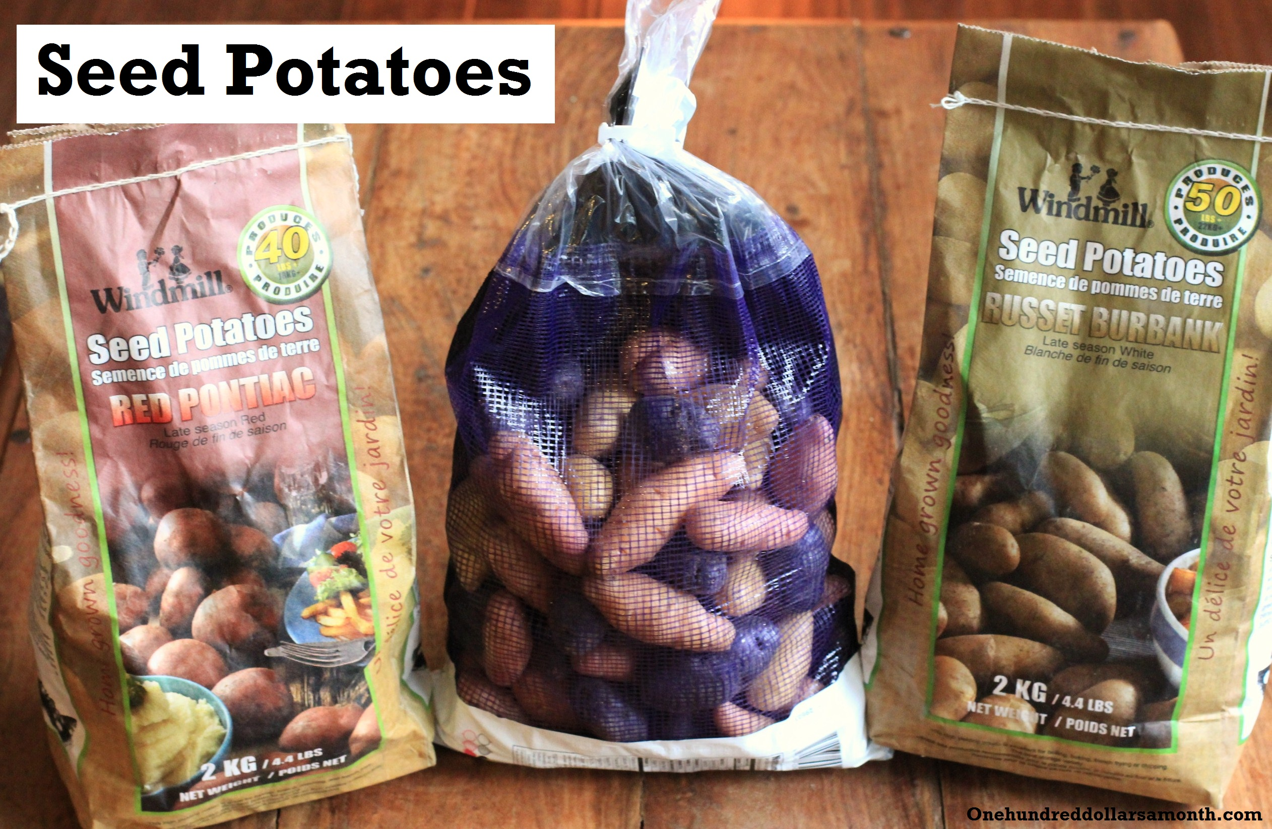 How to Grow Your Own Food: Seed Potatoes