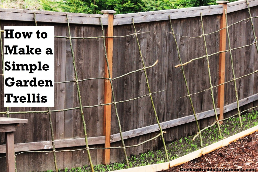 How to make a rustic pea or bean trellis out of sticks How to build a trellis