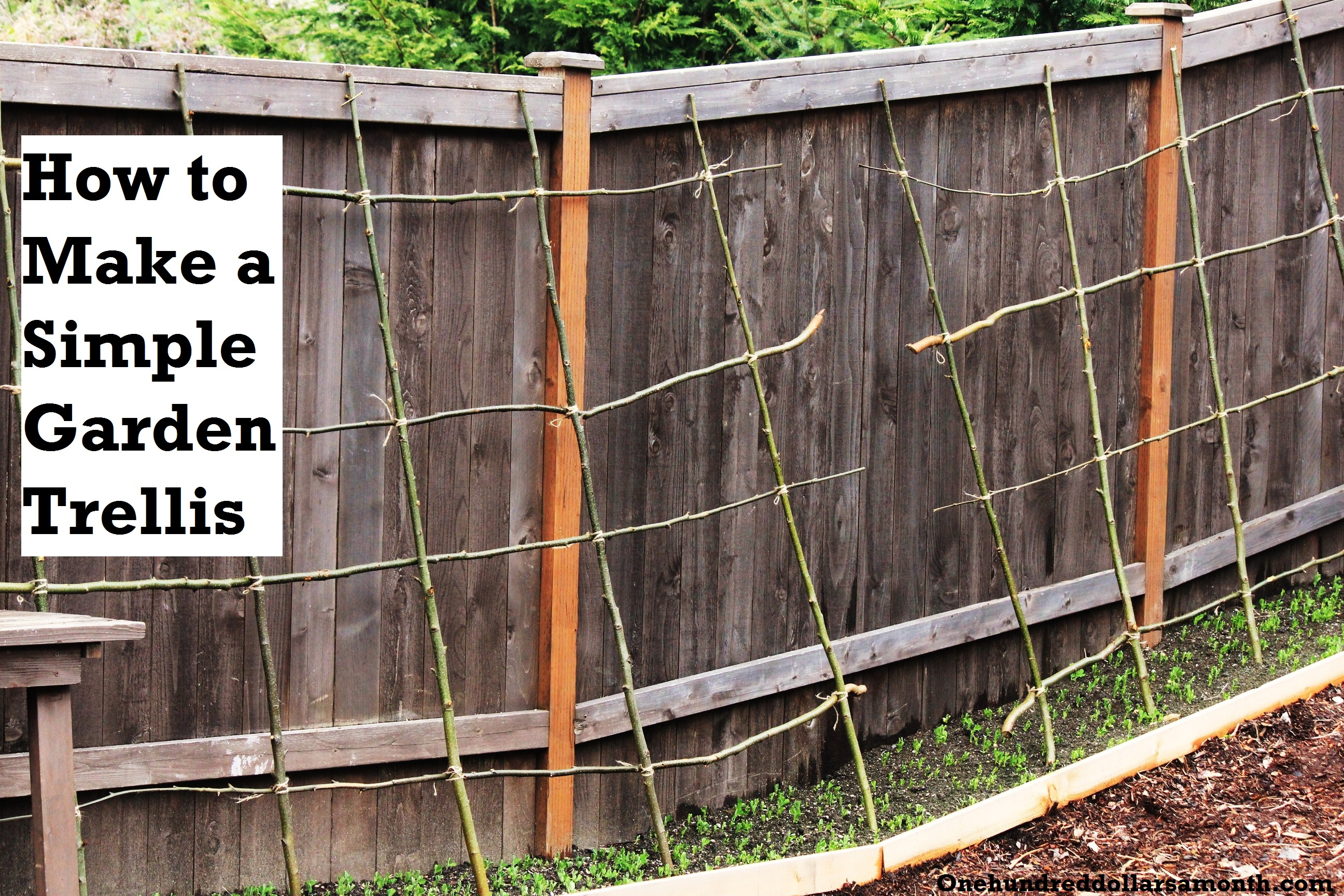 How to Make a Rustic Pea or Bean Trellis Out of Sticks | One ...