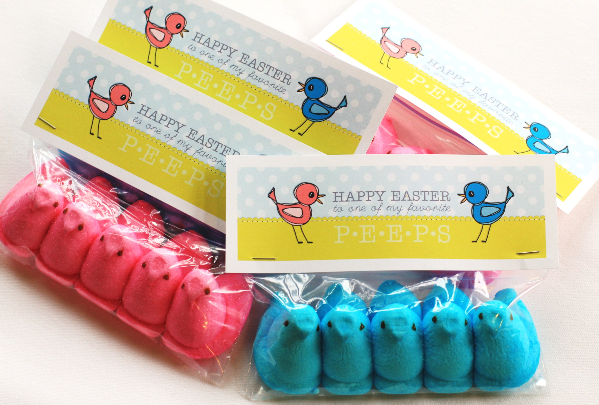 Easy Easter Craft Project For Kids: Peeps