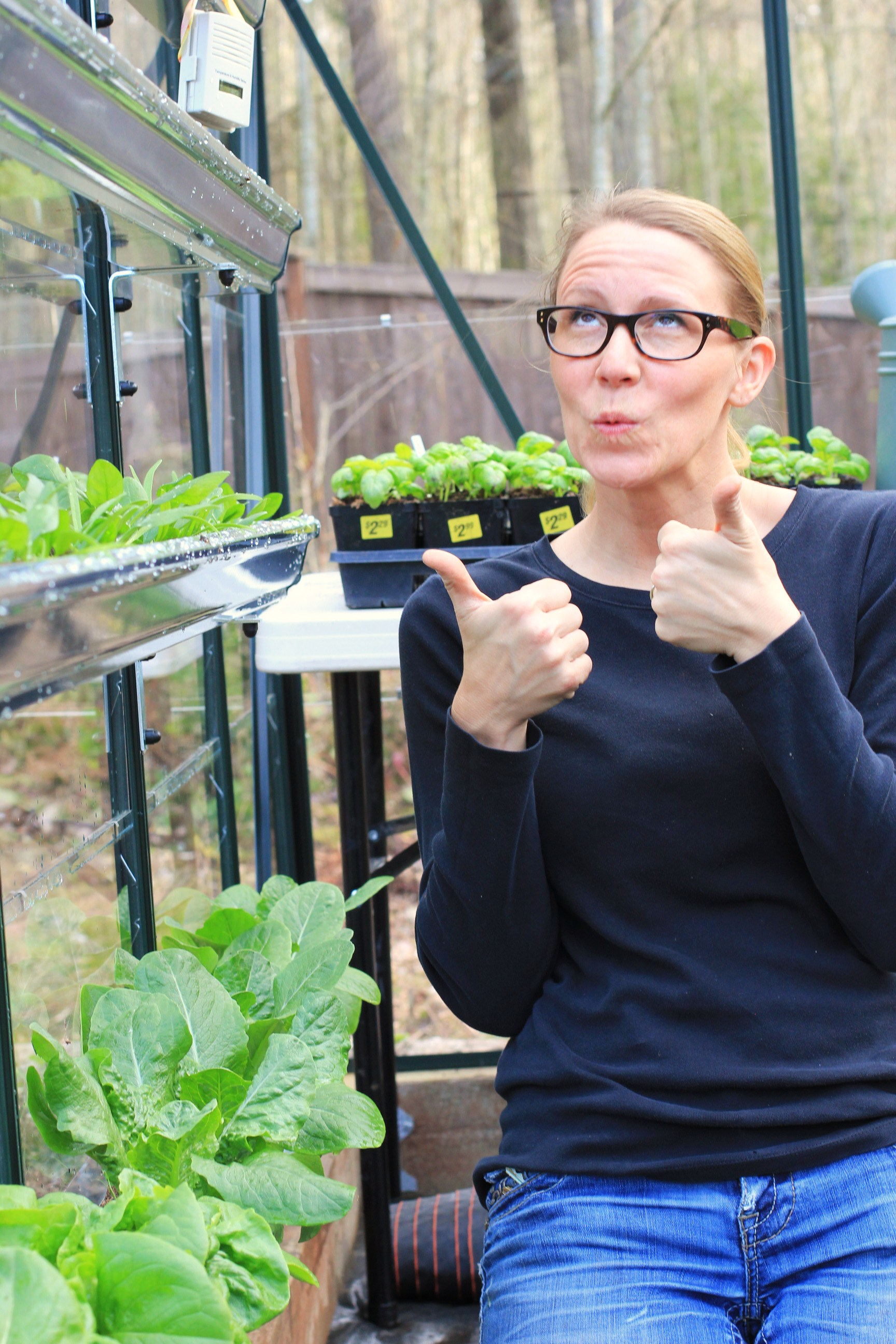 How to Grow Your Own Food In a Greenhouse
