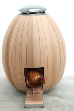 Unusual Chicken Coop Designs