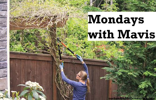 Mondays With Mavis: How to Feed Your Family For $100 a Month