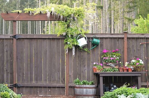 How to grow your own food vegetable garden tour one for Grow your own vegetable garden