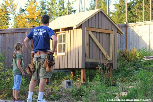 Raising Backyard Chickens: Chino The Handyman Builds a Coop