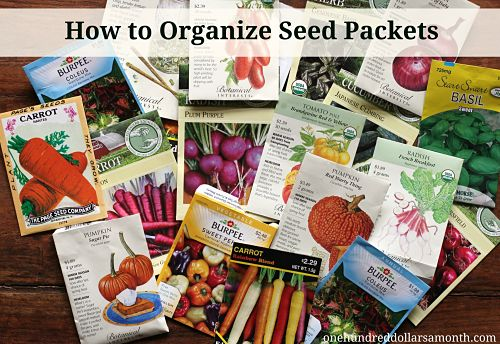 Gardening Tips and Tricks – How to Organize Seed Packets