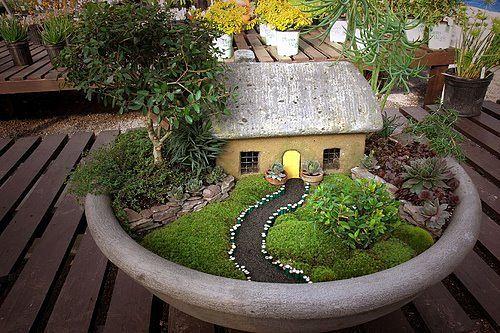 Container Garden Design Ideas Garden Barninc   Container Garden Design Ideas