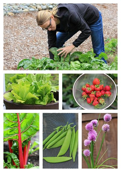 How to grow your own food