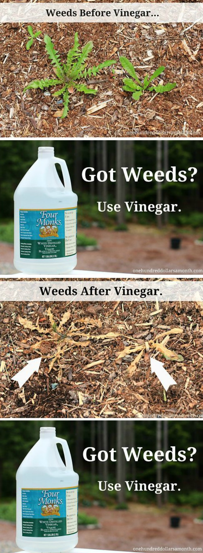 Gardening Tips and Tricks – Vinegar as a Natural Weed Killer