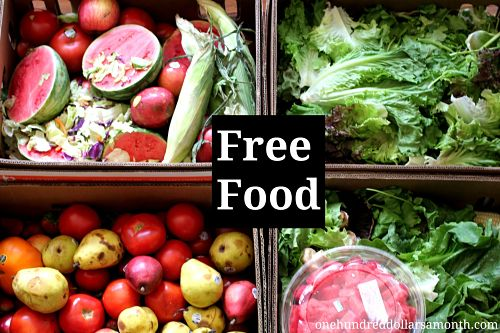 Free Food Week # 9 Reclaimed Food: Show and Tell