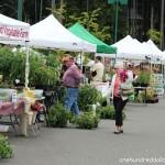 gig harbor farmer's market