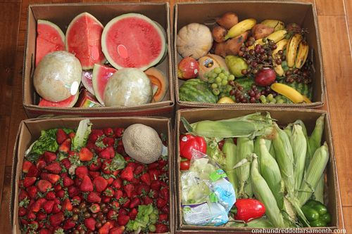 How to Get Free Food Week # 10 – Reclaimed Food Show and Tell