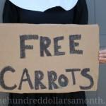 Mavis Garden Blog – Channel Your Inner Pilgrim Episode 1 : Free Carrots
