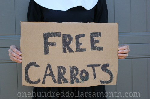 Mavis Garden Blog – Channel Your Inner Pilgrim Episode 1 : Free Carrots