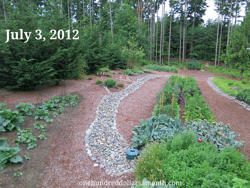 How to Grow Your Own Food: Garden Plot Pictures 7/3/2012