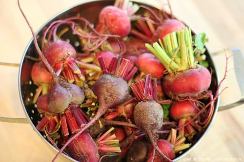 Recipe – How to Can Beets {Pickled Beets}