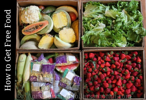 How to Get Free Food Week # 13 – Reclaimed Food Show and Tell