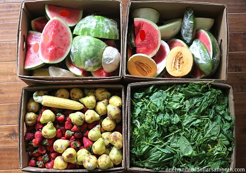 How to Get Free Food Week # 11 – Reclaimed Food Show and Tell