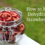 how to make dehydrated strawberries