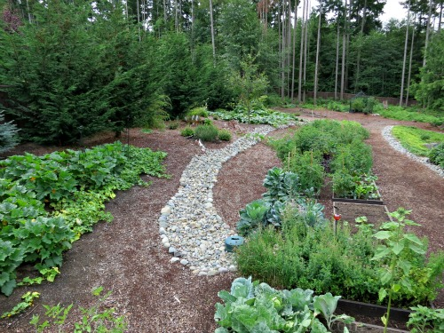 How to Grow Your Own Food: Garden Plot Pictures Update