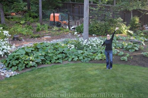 Mavis Garden Blog – Grow Baby Grow!