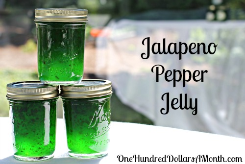 Canning 101 - How to Can Jalapeno Pepper Jelly Recipe