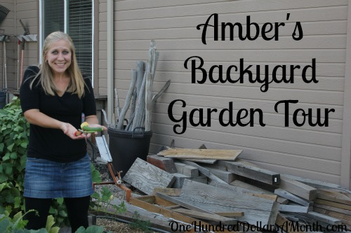Amber's Vegetable Garden Tour