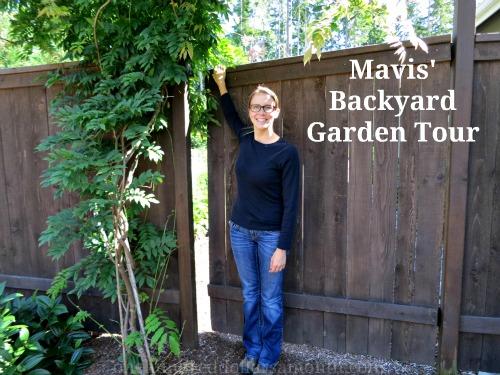 Mavis Garden Blog – Garden in Transition
