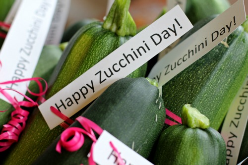 mavis garden blog - happy national zucchini day