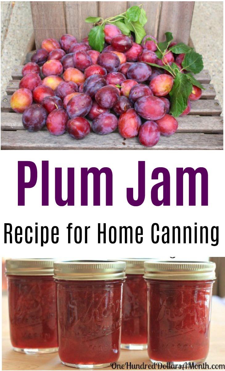 Canning 101 – Cinnamon Plum Jam Low Sugar Recipe