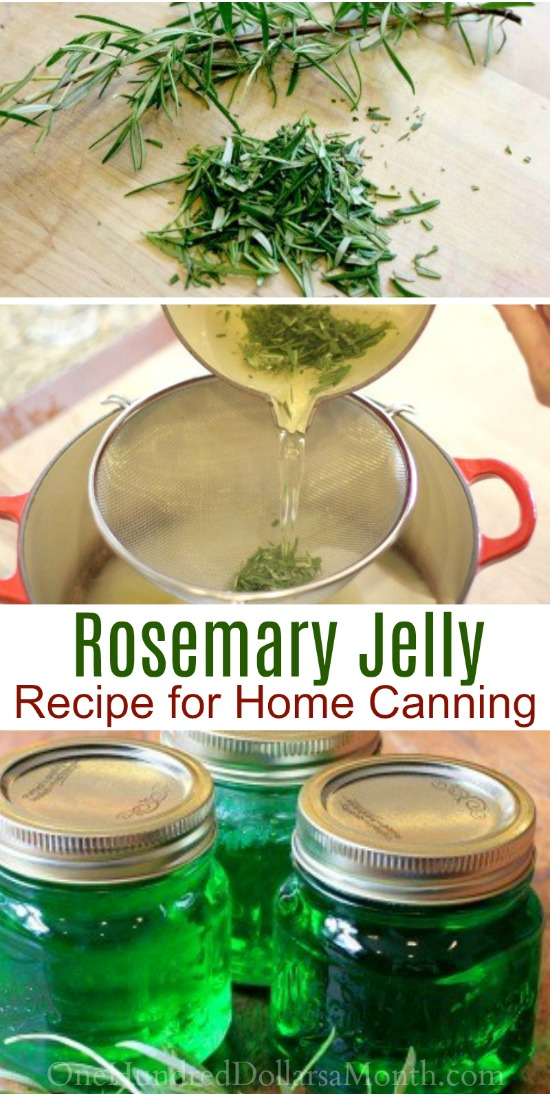 Canning 101 – How to Make Rosemary Jelly