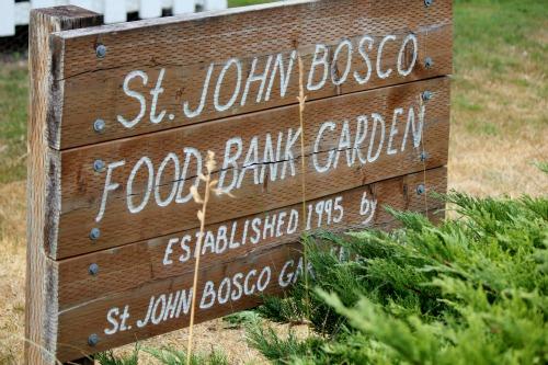 Garden Tour | St. John Bosco – Food Bank Garden Lakewood, Washington