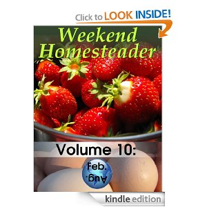 Amazon Free Kindle Books – Weekend Homesteader, Slow Cooker Beef Recipes, Meatloaf, Juicing Recipes + More