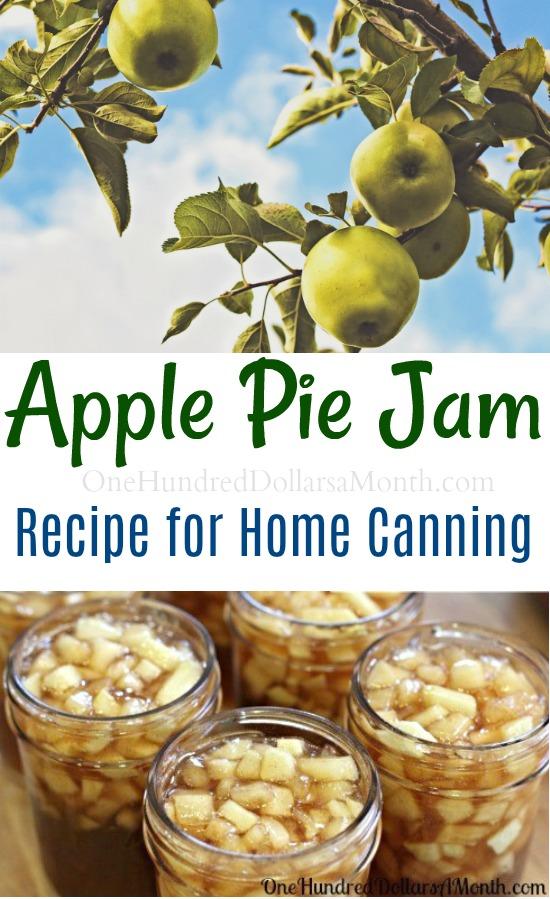 Canning 101 – Apple Pie Jam Recipe