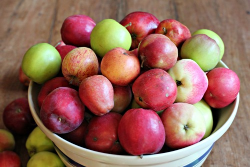 keep apple fresh Find out how to prevent apples from turning brown at recipetipscom keep apples from turning brown in fruit salads and other fresh apple recipes visit us for delicious apple.