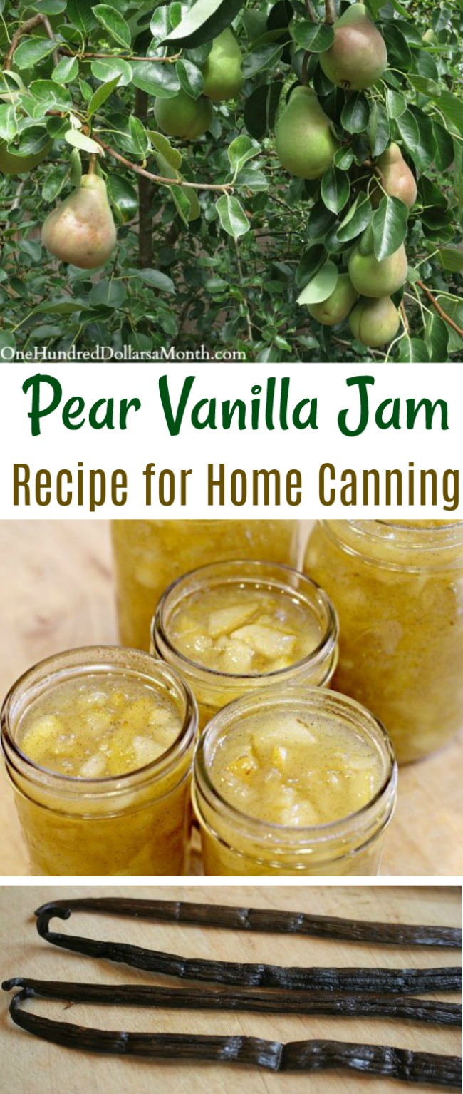 Canning 101 – Pear Vanilla Jam Recipe