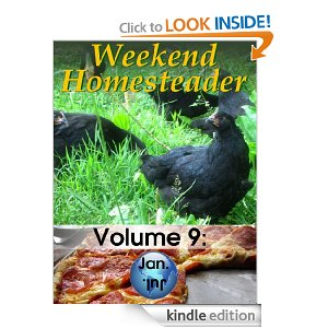 Amazon Free Kindle Books – Food Storage, Weekend Homesteader, Cavelady Cooking, Fall Crafts for Kids and More