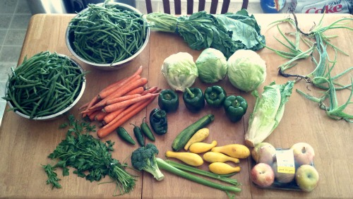 Reader Melissa Sends in Her Free Produce Pictures