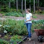 mavis butterfield garden