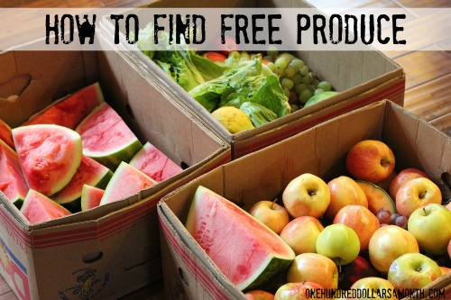 How to Get Free Food Week #27  – Reclaimed Food Show and Tell