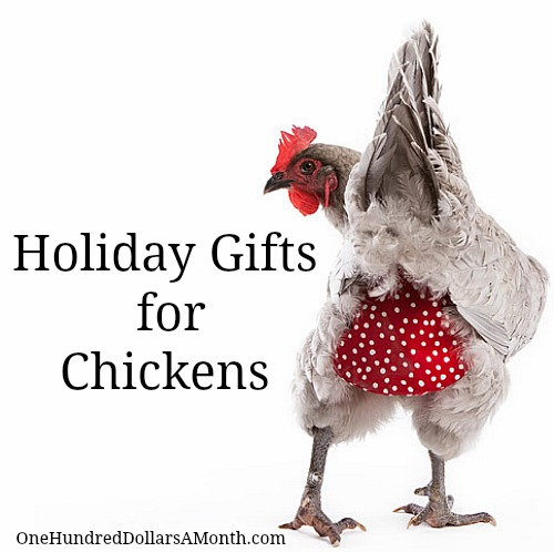 Holiday Gifts for your Pet Chickens