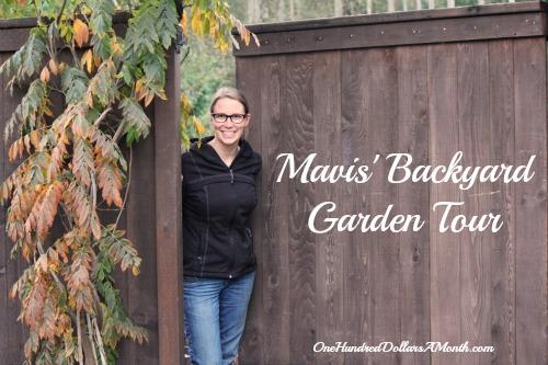 Mavis' Backyard Garden Tour – November